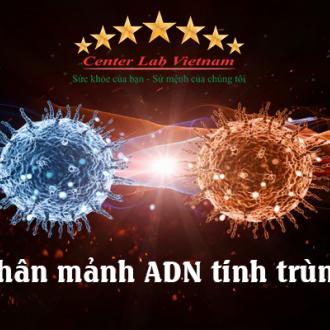 Phân mảnh ADN tinh trùng - Nguyên nhân gây vô sinh nam